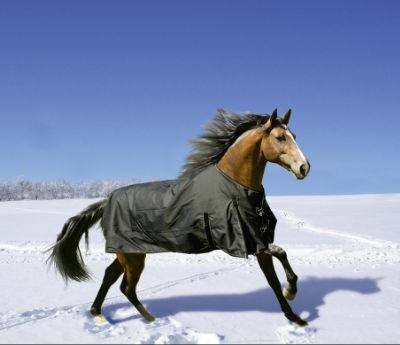 Winterdecke Fairbanks 400g - schwarz