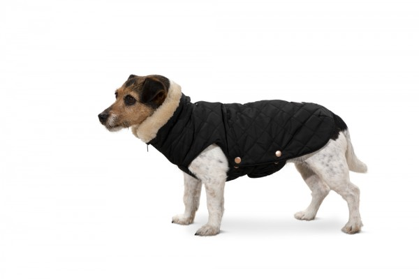 Hundemantel GLOSSY QUILTED - black